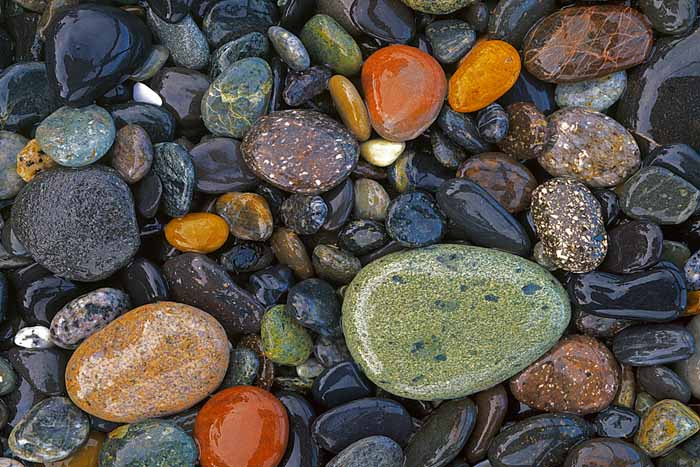 Stones, Agate Beach County, Lopez Island, Washington # 1659