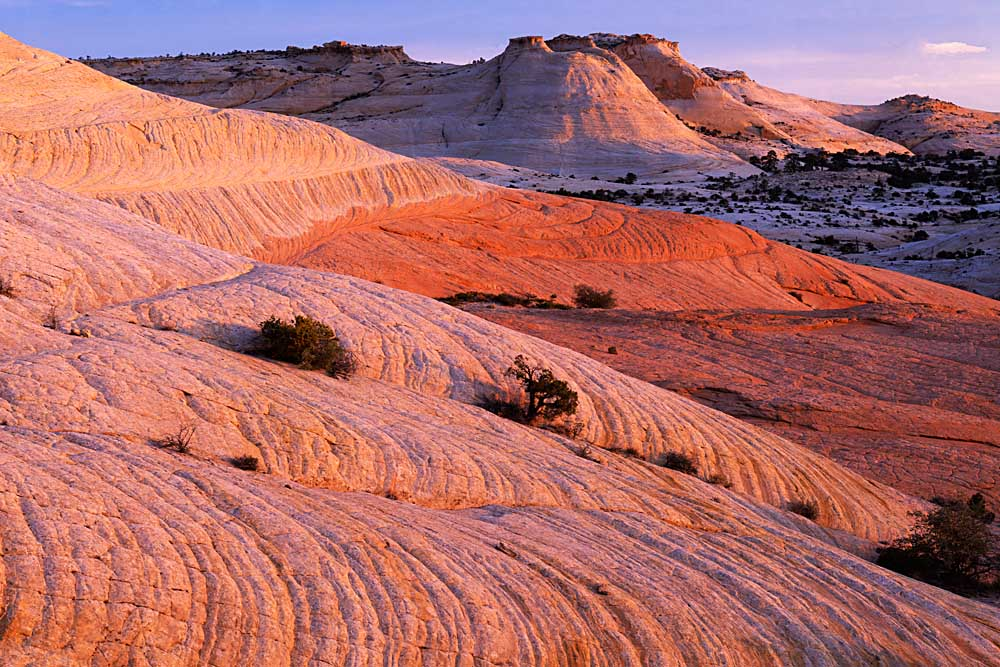 Sandstone, Grand Staircase-Escalante National Monument, Utah # 3140