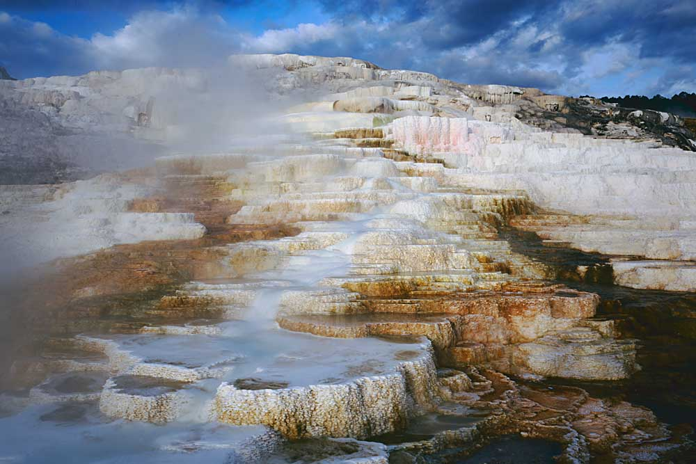 Terrace of Minerva Springs, Mammoth Hot Springs, Yellowstone National Park, Wyoming # 4088