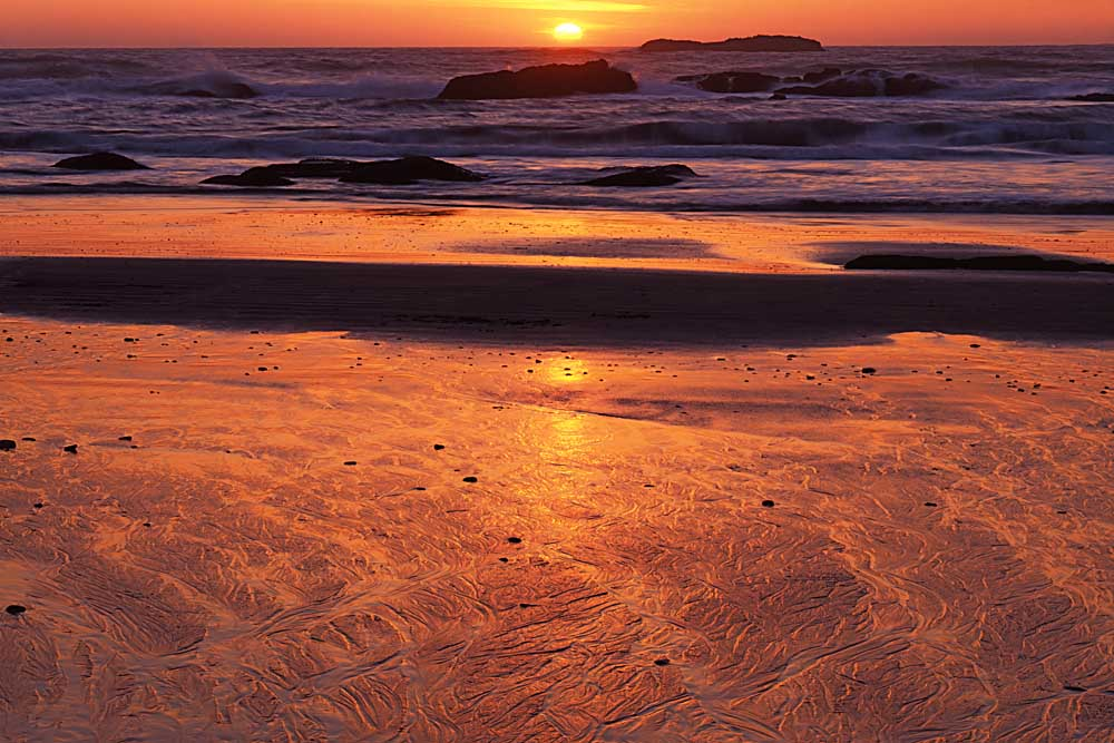Coast at sunset, Seal Rock State Park, Oregon # 5077