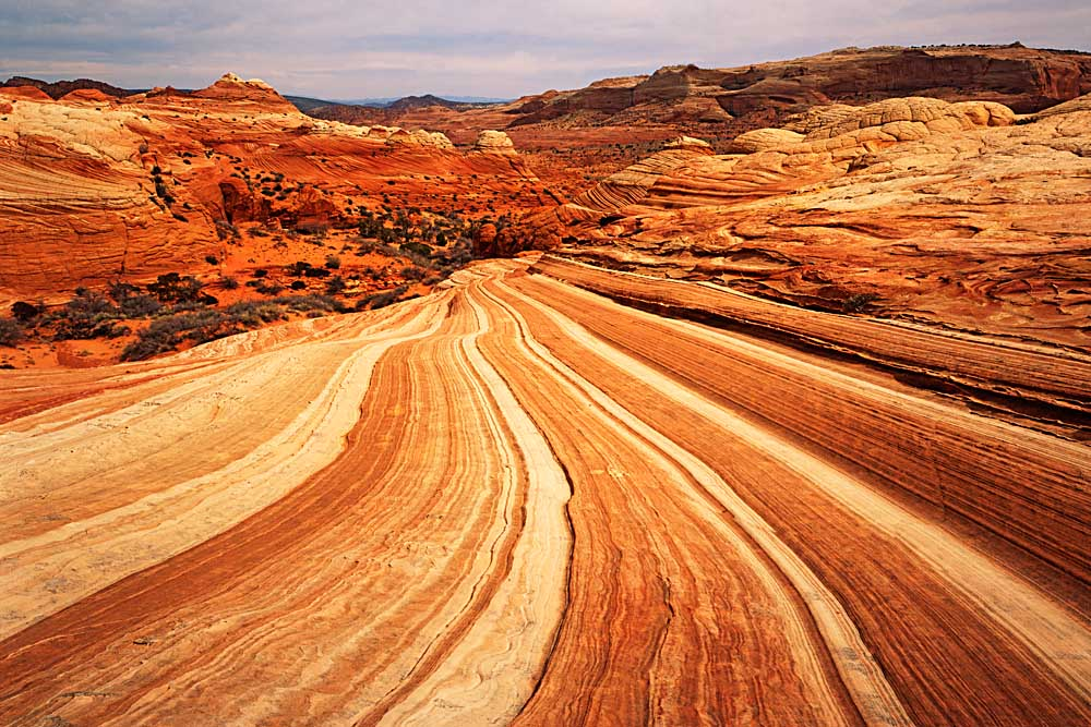 Sandstone on the Colorado Plateau, Paria-Vermilion Cliffs Wilderness, Vermilion Cliffs National Monument, Arizona # 6106h