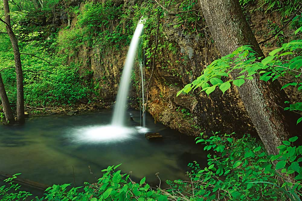 Falling Spring, Mark Twain National Forest, Missouri # 7570