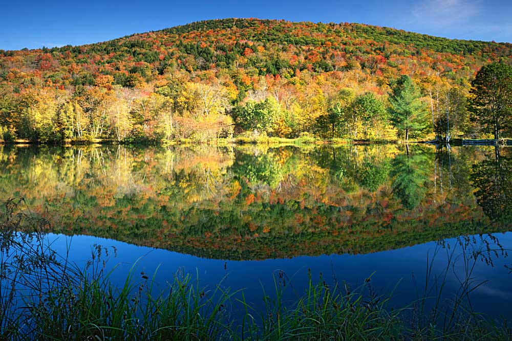 King's Pond, Green Mountain National Forest, Vermont # 8032