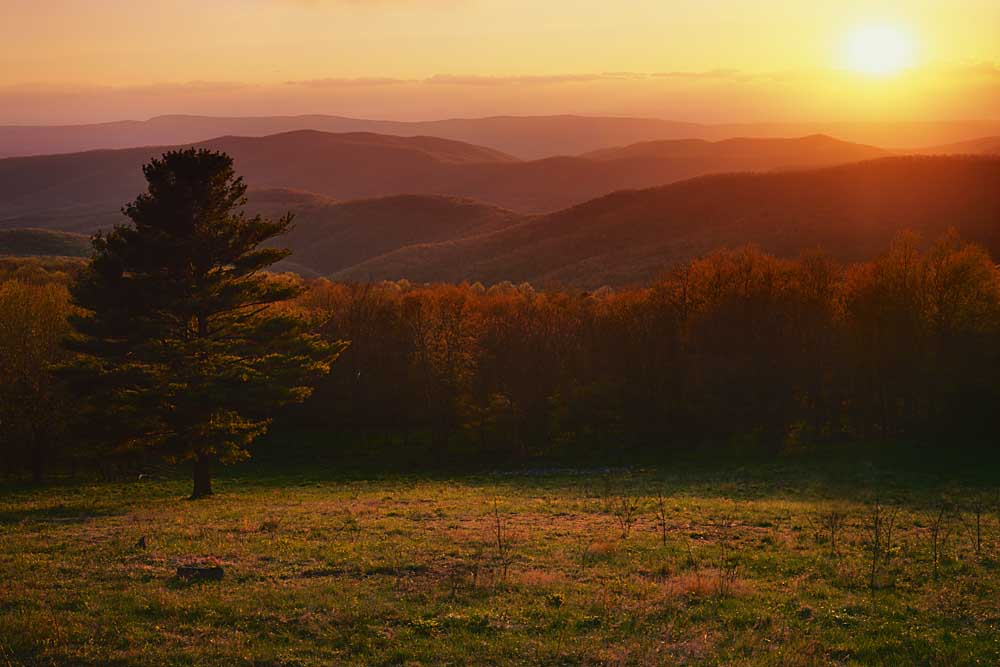 Sunset from Hazeltop Ridge, Shenandoah National Park, Virginia # 9141