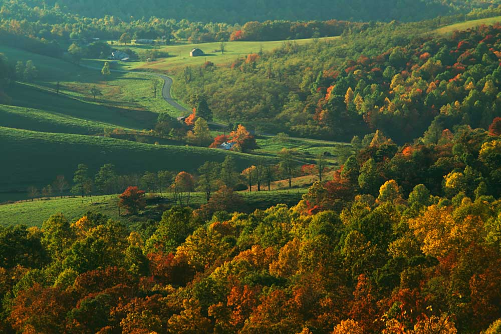 Autumn, Blue Ridge Parkway, Virginia # 9267