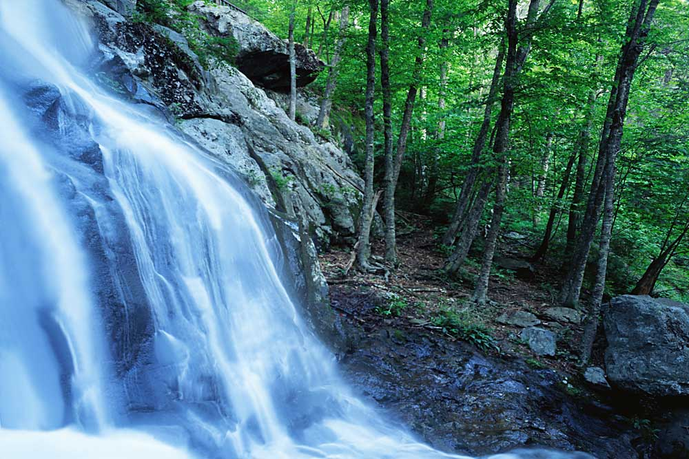 Dark Hollow Falls, Shenandoah National Park, Virginia # 9300