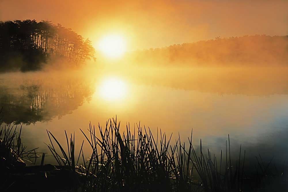Sunrise on Fairy Stone Lake, Fairy Stone State Park, Virginia # 9609