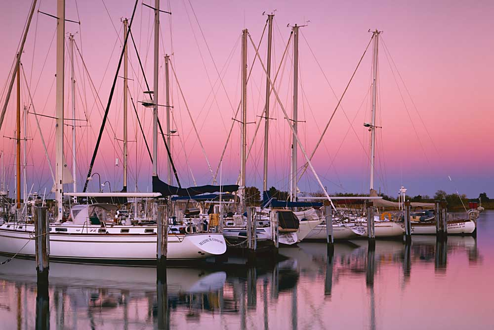 Sailboats at Dusk, Chesapeake Bay, Virginia # 9799-h