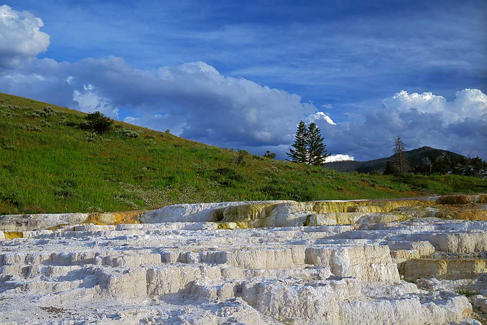 Opal Terrace, Yellowstone National Park, Wyoming # 4081