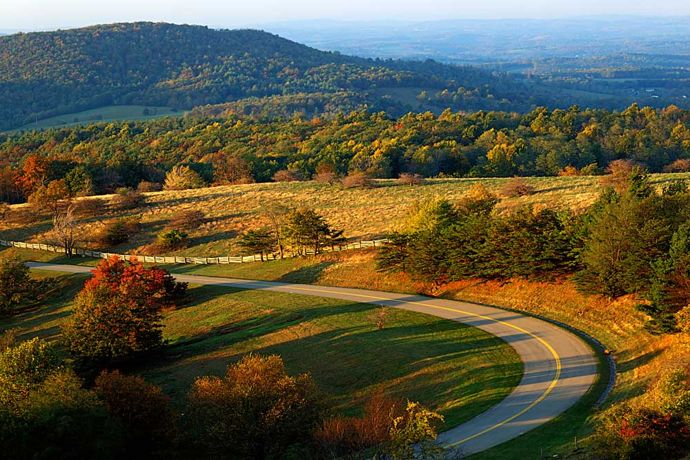 The Blue Ridge Parkway, Patrick County, Virginia # 9228