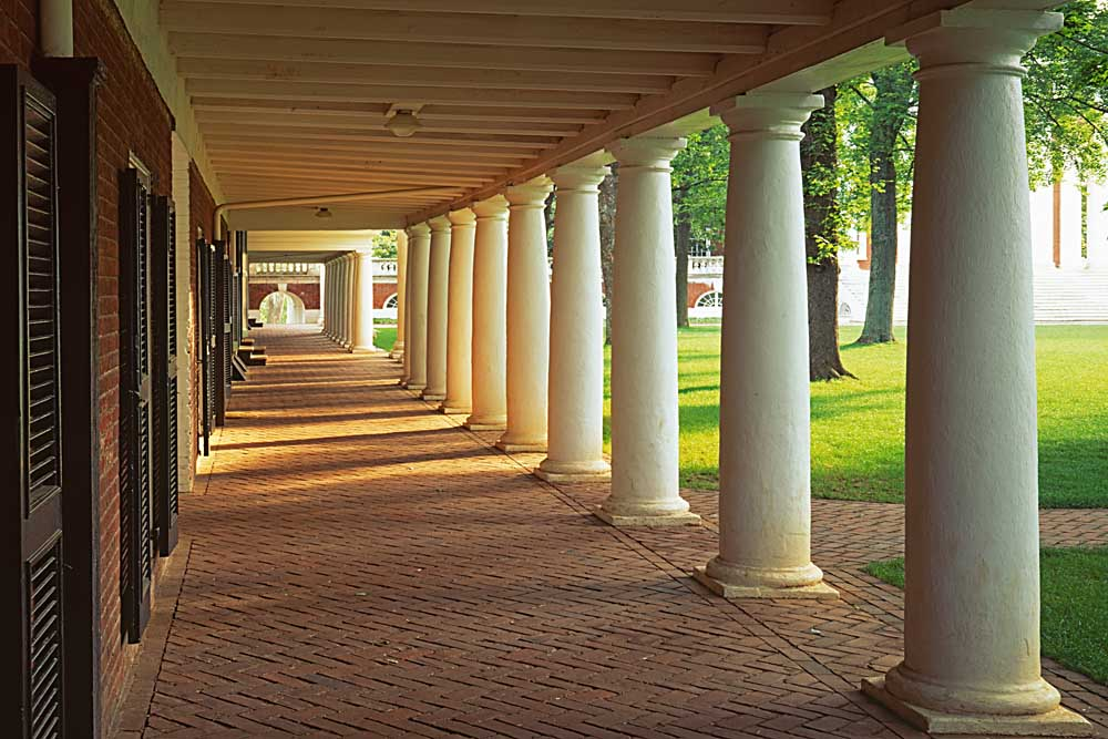 Walkway along the Commons, University of Virginia, Charlottesville, Virginia # 9444